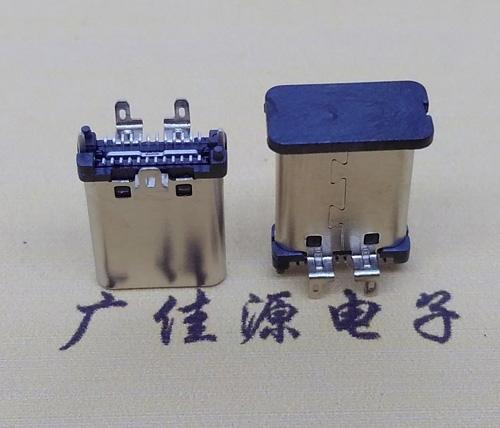 广州typec立式公头