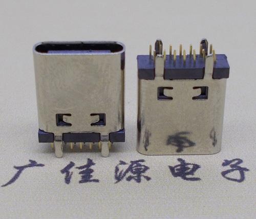 广州type c立式母座