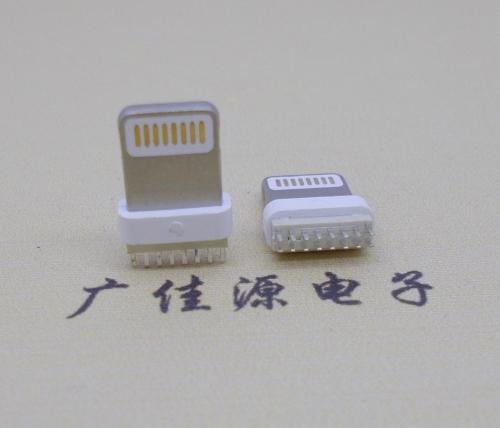 广州苹果手机充电头