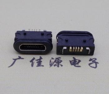 Micro USB 5p母座两插板防水功能插座